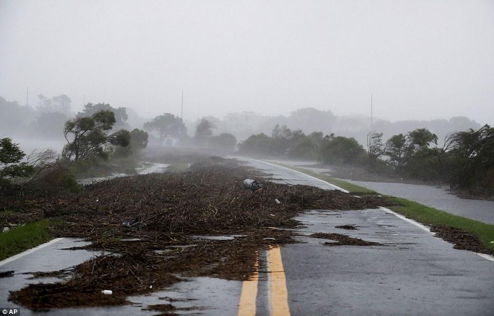 إعصار ماثيو يقتل أكثر من 800 شخص في هايتي I.dailymail.co.uk_i_pix_2016_10_08_05_3934BD3200000578_3827862_image_a_74_1475901698858